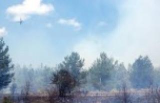 Atatürk barajında yangın