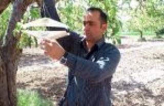 Beyşehir'de Tarım Alanlarında Karaleke Alarmı...