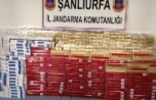 Bin 500 kaçak puro ele geçirildi