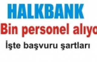 Halk Bankası personel alıyor