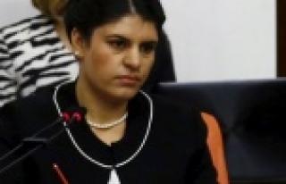 HDP Öcalan'ı geri çekti