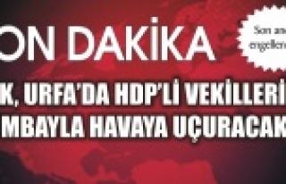 PKK'nın planı deşifre oldu!