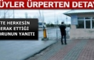 Türkiye'yi sarsan cinayette Urfa detayı!