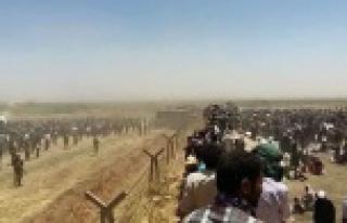 Urfa sınırında insanlık dramı...