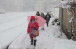 Urfa'da okullar tatil edildi