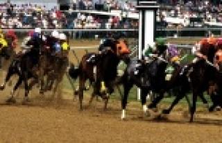 Urfalı at yarışı severlere müjde...