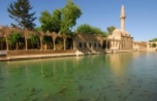 Urfa'ya güzel haber