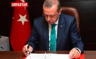 İmamoğlu görevden aldı, Erdoğan atadı...