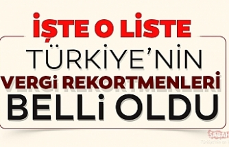 İŞTE TÜRKİYE'NİN VERGİ REKORTMENLERİ