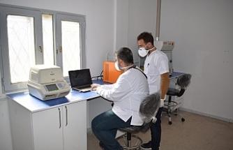 Barış Bölgesine PCR laboratuvarı kuruldu