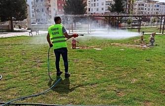 Viranşehir'de lavrayla mücadele başladı