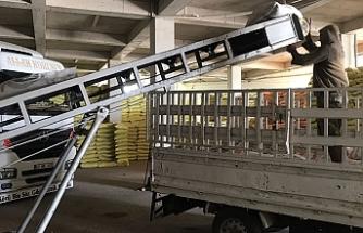 Urfa'da 200 ton mercimek tohumu dağıtılıyor