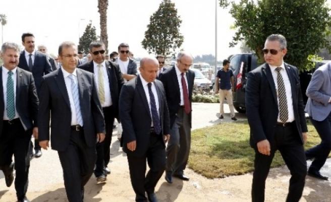 Gıda, Tarım Ve Hayvancılık Bakanı Arzu, EXPO Alanına Ağaç Dikti