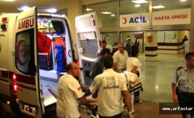 Kobani'de mayın patladı; 8 Çocuk yaralı