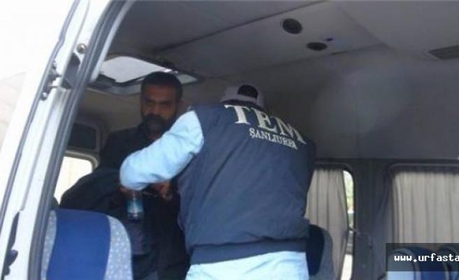 Türkiye'nin konuştuğu isim Urfa'da tutuklandı
