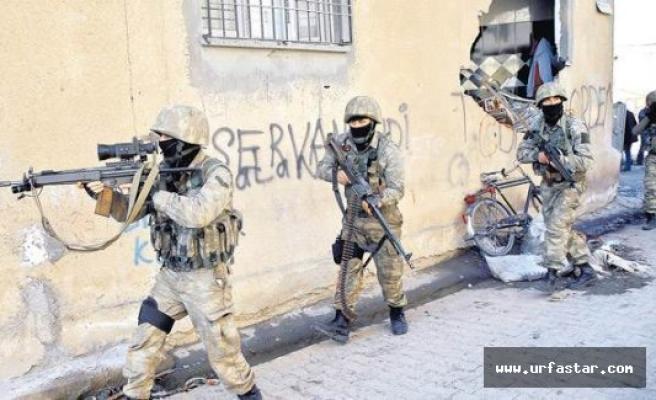 PKK'ya çok ağır darbe! O bodruma girildi