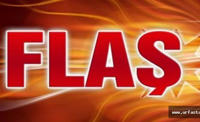 Urfa'da 4 sırt çantasında 50 kilo patlayıcı bulundu