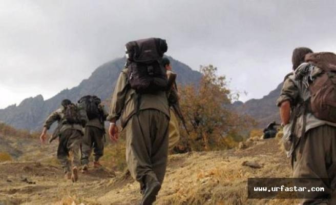 Urfa'da terör örgütüne büyük darbe