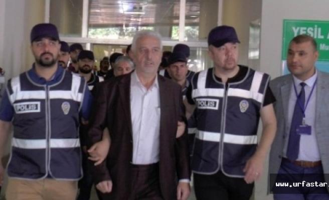 FETÖ  operasyonunda kimler tutuklandı?