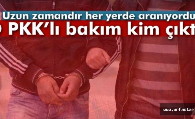 O PKK'lı bakın kim çıktı?