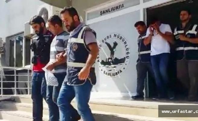 İstanbul'da dolandırdı, Urfa'da yakalandı