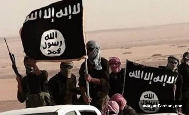 IŞİD'in Türkiye'deki yeni celladı: Urfalı
