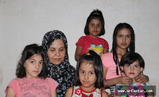 Suriyeli ailenin vatan özlemi