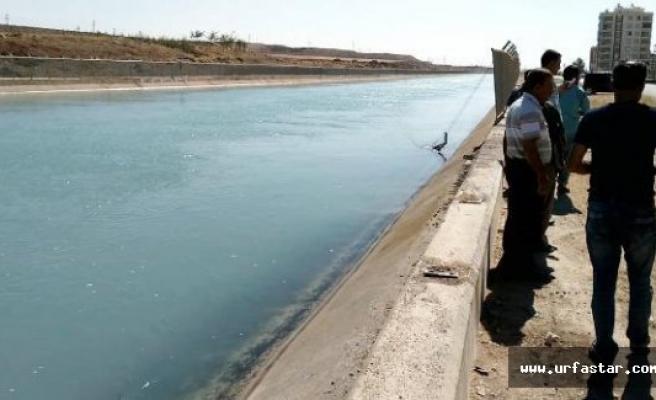Urfa'da korkunç kaza…