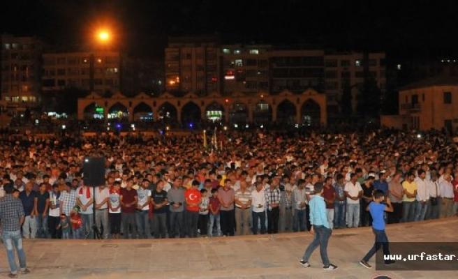 Urfa'da şehitler için gıyabi cenaze namazı..