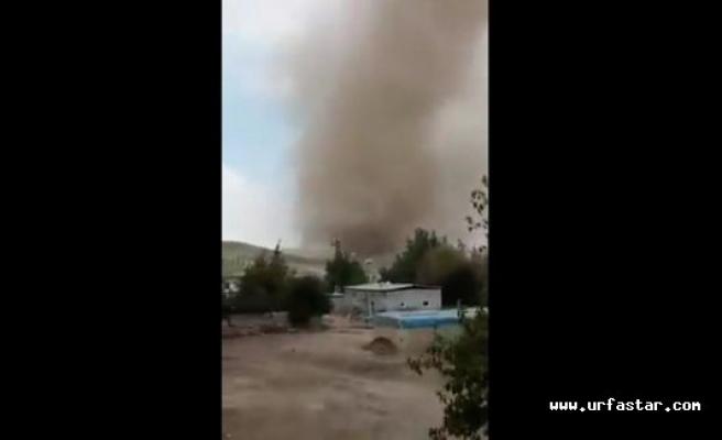 Urfa'da görüldü! Korkuya neden oldu