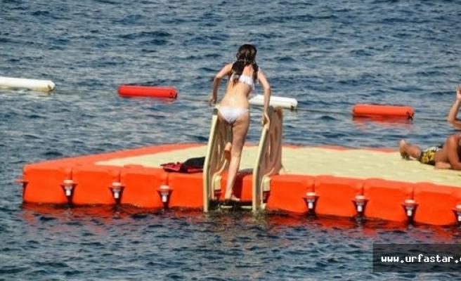 Tatlıses yeni aşka yelken açtı