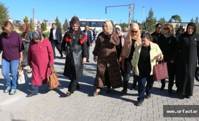 İstanbul'dan Akçakale'ye sevgi yoluyla geldiler