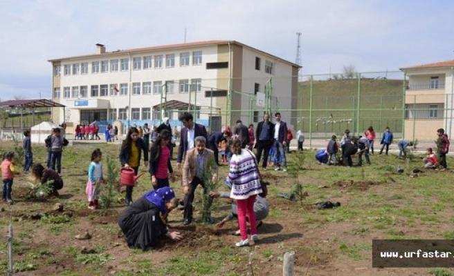 Engelli öğrenciler köy okulunda fidan dikti