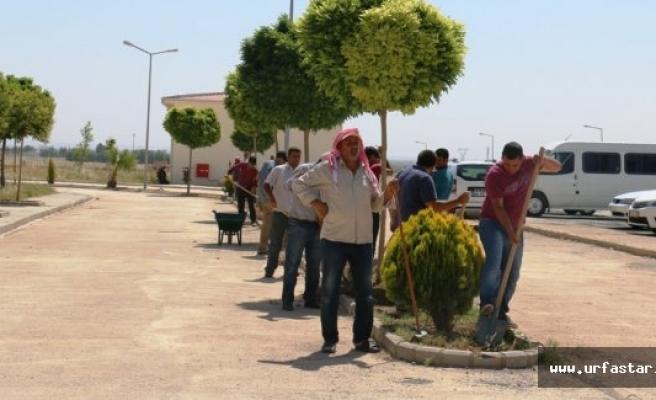 Akçakale Belediyesi'nde 108 kişi işbaşı yaptı