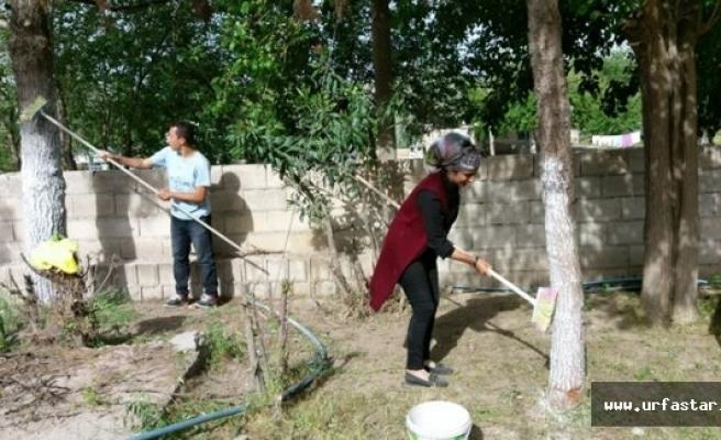 Birecik MYO'dan Sosyal Sorumluluk