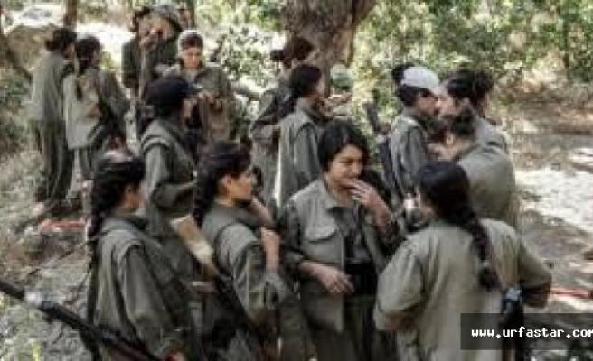 PKK asıl darbeyi şimdi yedi!