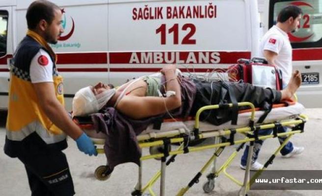 Siverek'te 'hayvan otlatma' kavgası: 4 yaralı