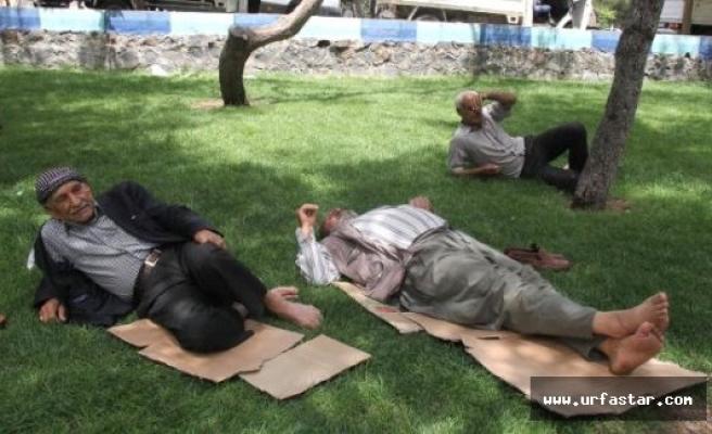 Urfa'da sıcaklık arttı