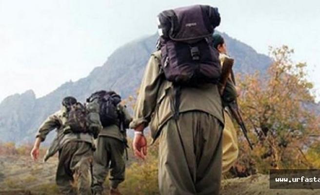 PKK'ya 'Kasım' şoku: 351 terörist...