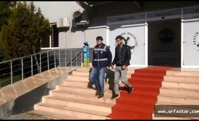 Şanlıurfa'da Hırsızlığa 3 Gözaltı