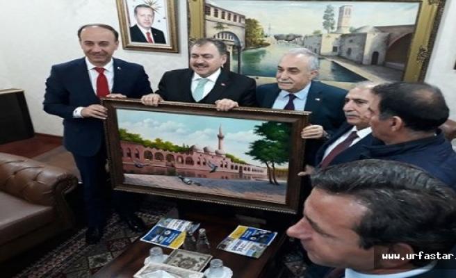 Eroğlu, Cumhurbaşkanının talimatını Urfa'da verdi