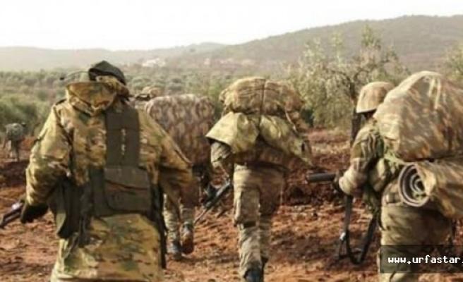PKK'ya en ağır darbe indirildi