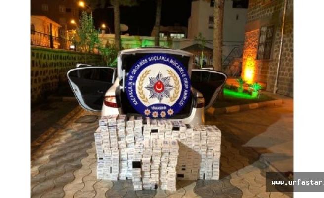 Urfa'da operasyonlar devam ediyor..
