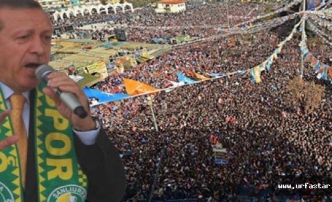 Erdoğan'ın Urfa programı belli oldu...