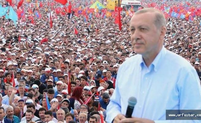 Erdoğan kararını verdi