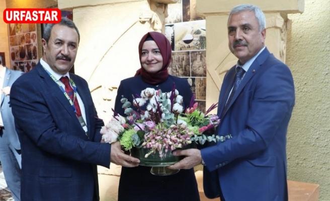 Peltek ve Kaya Ankara'da sırt sırta verdi