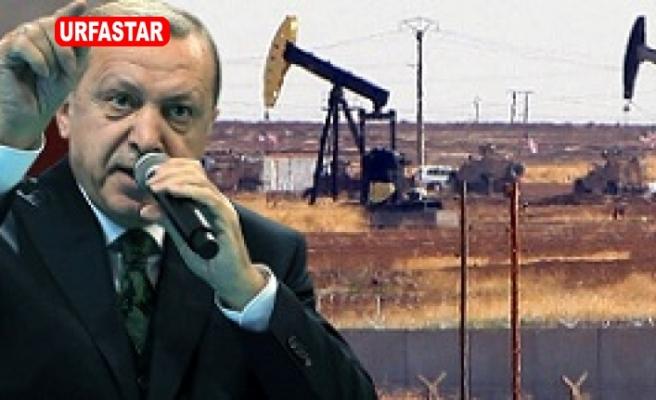 Erdoğan: Gelin petrolü beraber çıkaralım
