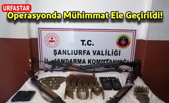Viranşehir'de ele geçirildi