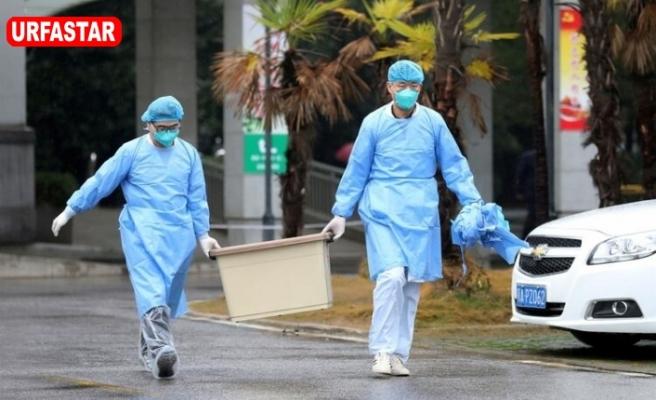 Gizemli virüse karşı alarma geçildi