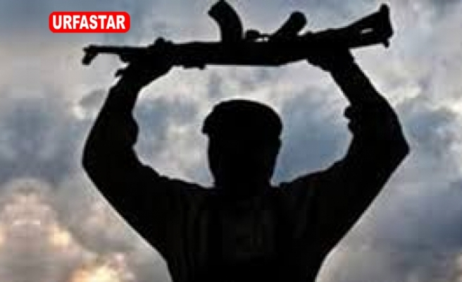 Şalıurfa'da 2 terörist teslim oldu
